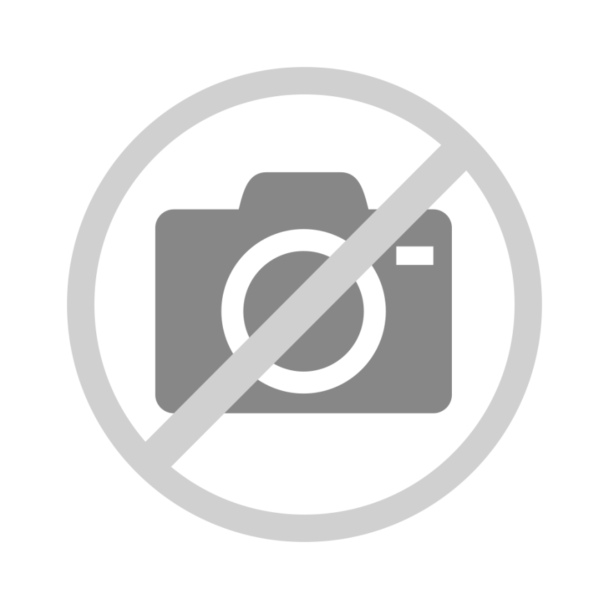 Mini Shiva Family