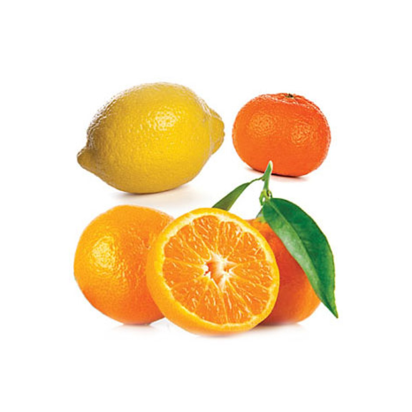 Citrus Bliss